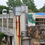2016/5/14 仙台市八木山動物公園 写真