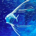 仙台うみの杜水族館 イトヒキアジ 動画